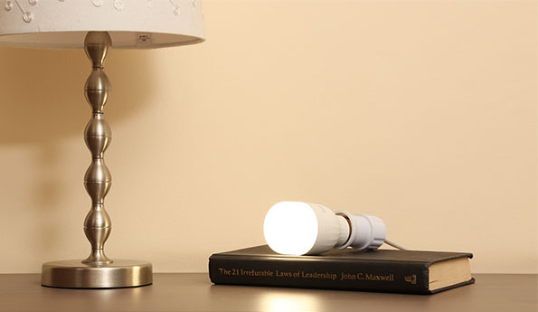 LED Bulb (White)